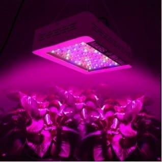 Mars Hydro 300w Qualité de la lumière