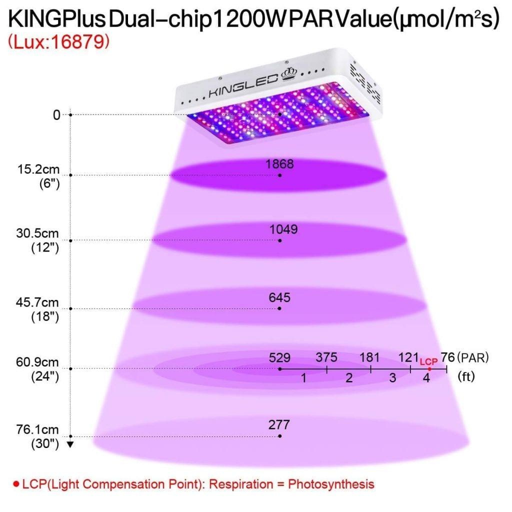 King Plus 1200W
