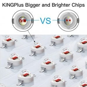 King Plus 1200W chips