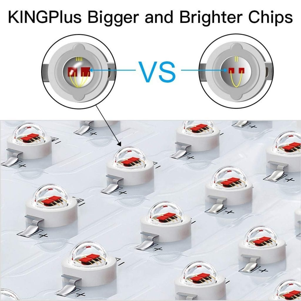 King Plus 600W chips
