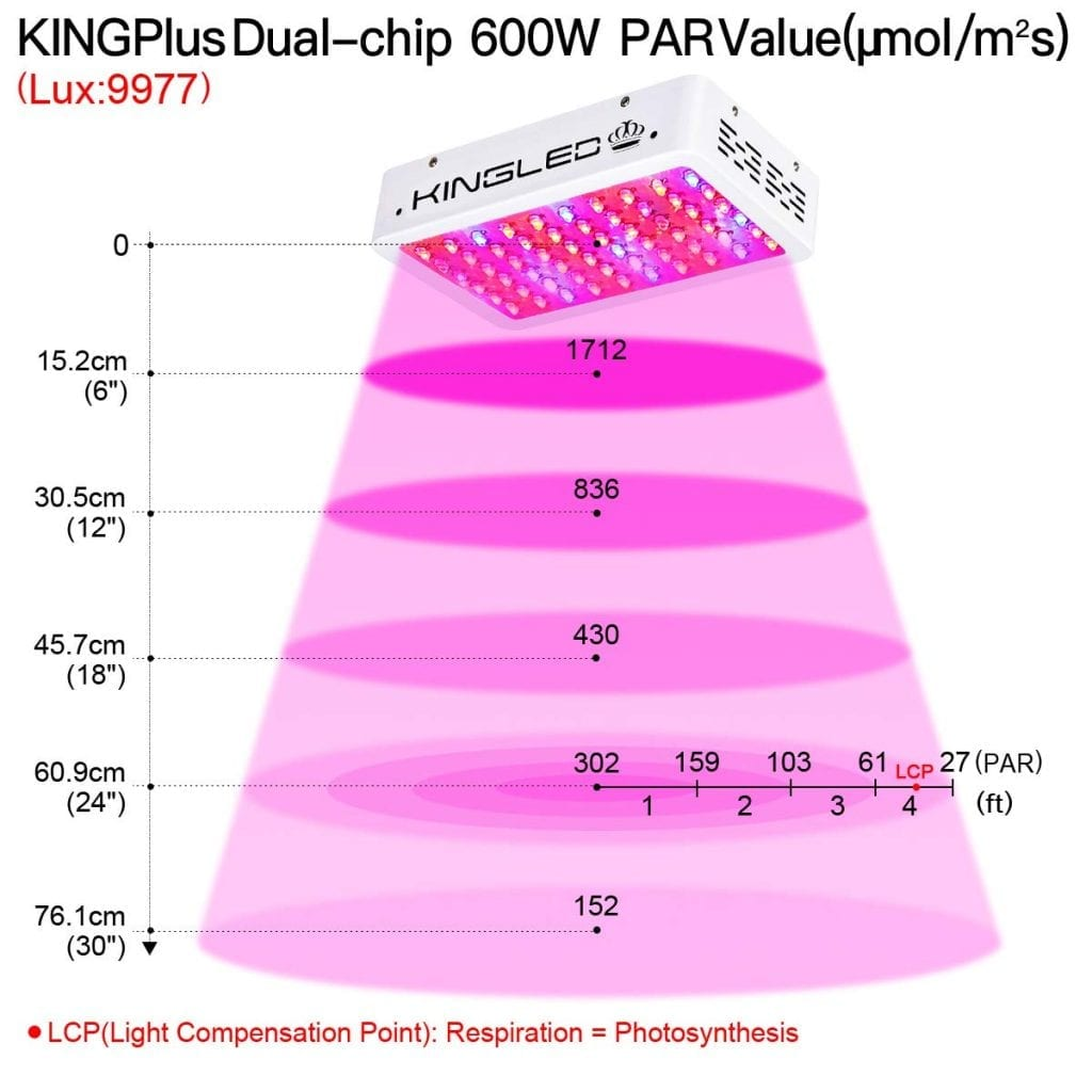 King Plus 600w PAR value