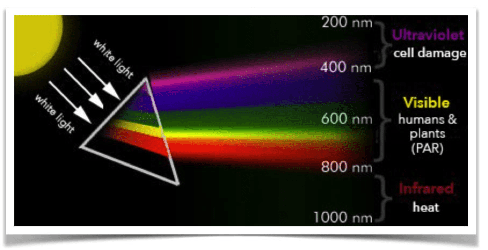 Why is PAR important - light spectrum