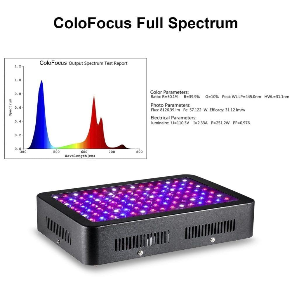 Colofocus 1000w full spectrum