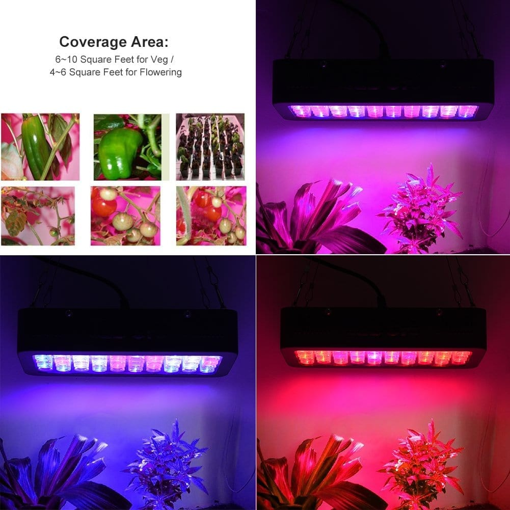 Ledgle LED grow light 300w coverage:switches