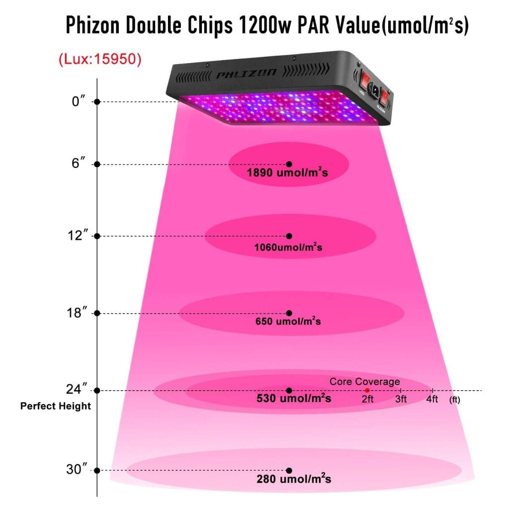 Phlizon Newest 1200w coverage