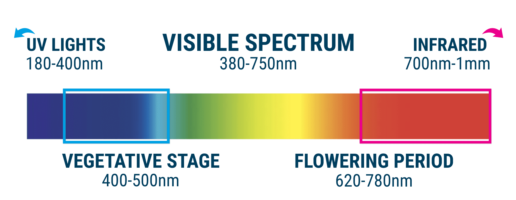 How does the color spectrum affect the growing of a cannabis plant?
