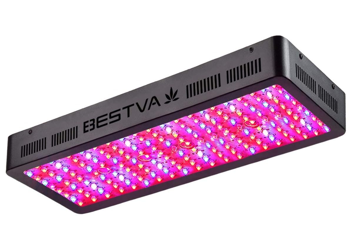 6 Best 2000w Led Grow Lights In 2019 Growyour420