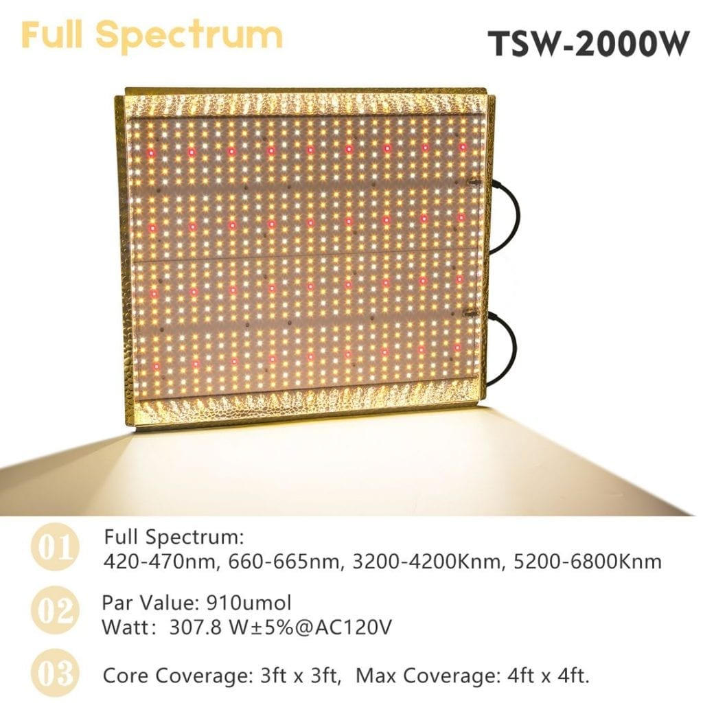 TSW2000w-coverage