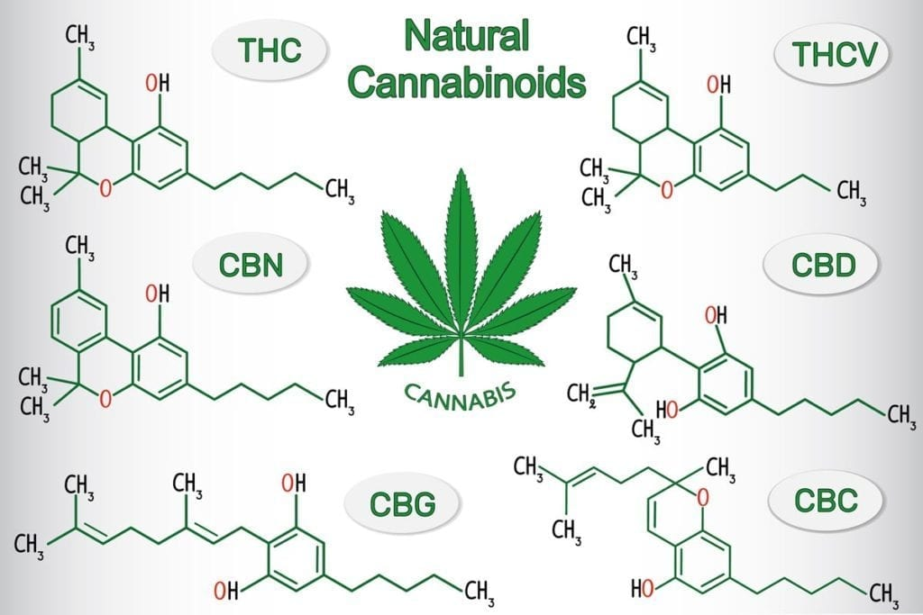 Different Cannabinoids in indica vs sativa