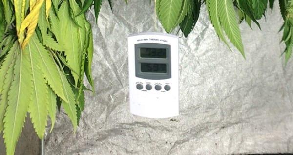 temperature control marijuana