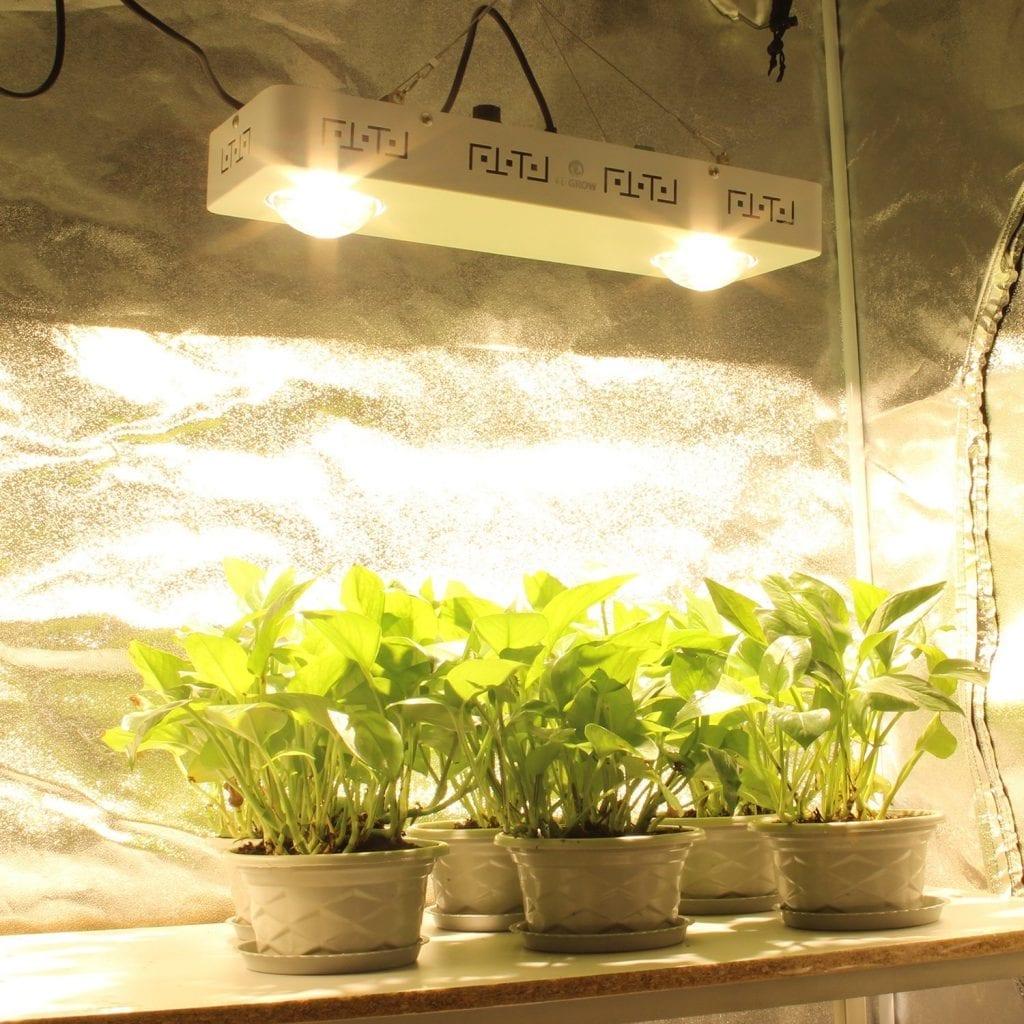 CREE CXB3590 COB LED Grow Light