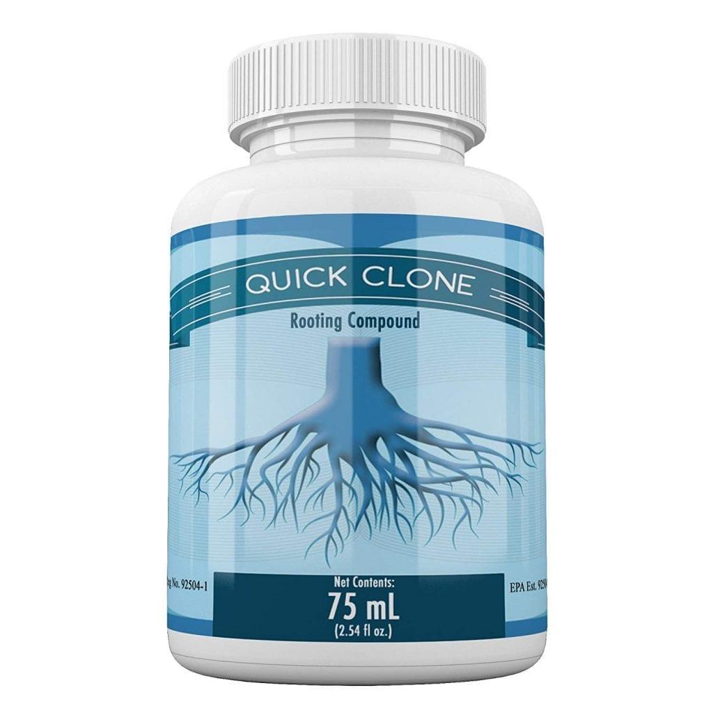 Quick Clone Gel