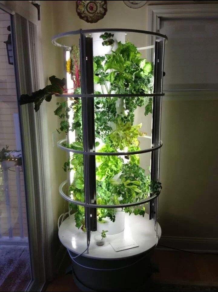 Hydroponic vertical garden