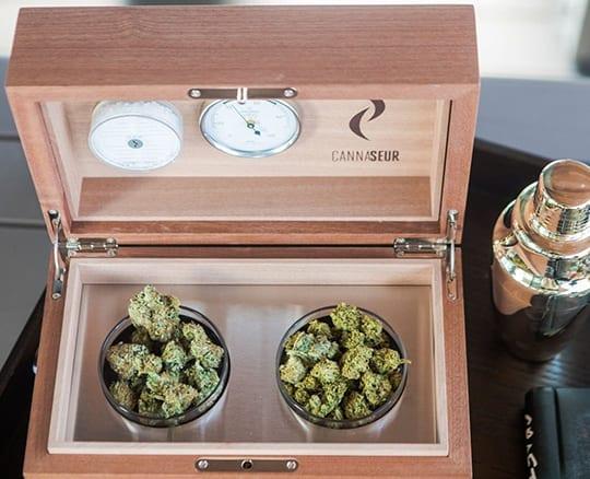 Cannabis humidor box
