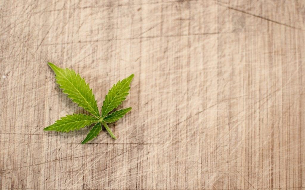 a cannabis leaf