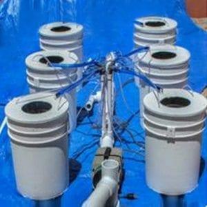 PowerFlow DWC Hydroponic System