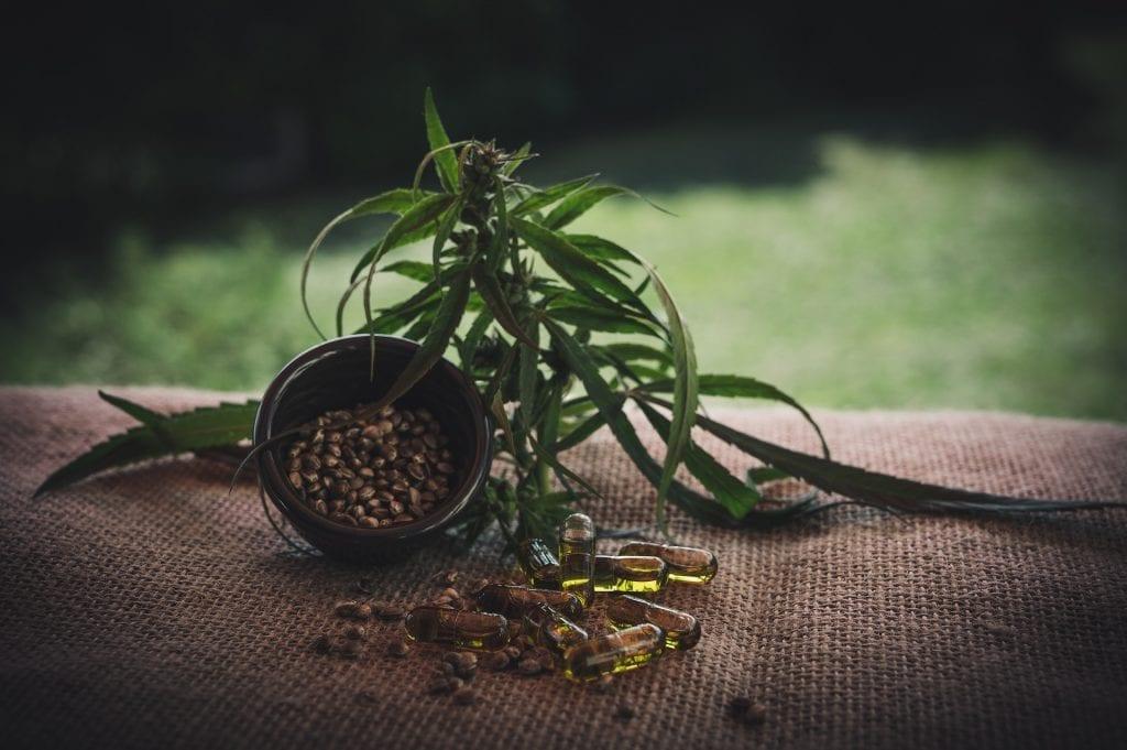 planting germinated weed seeds