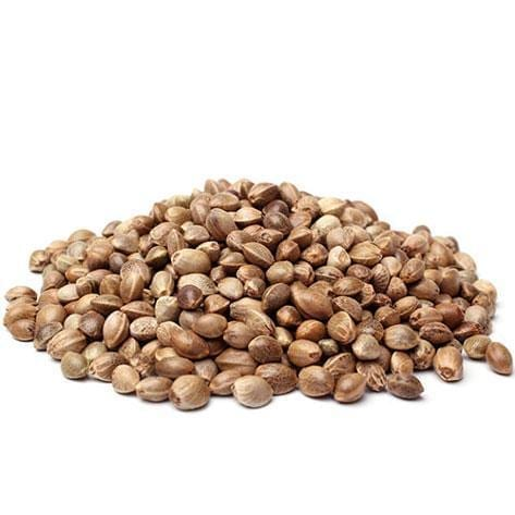 Sour Disel Seeds