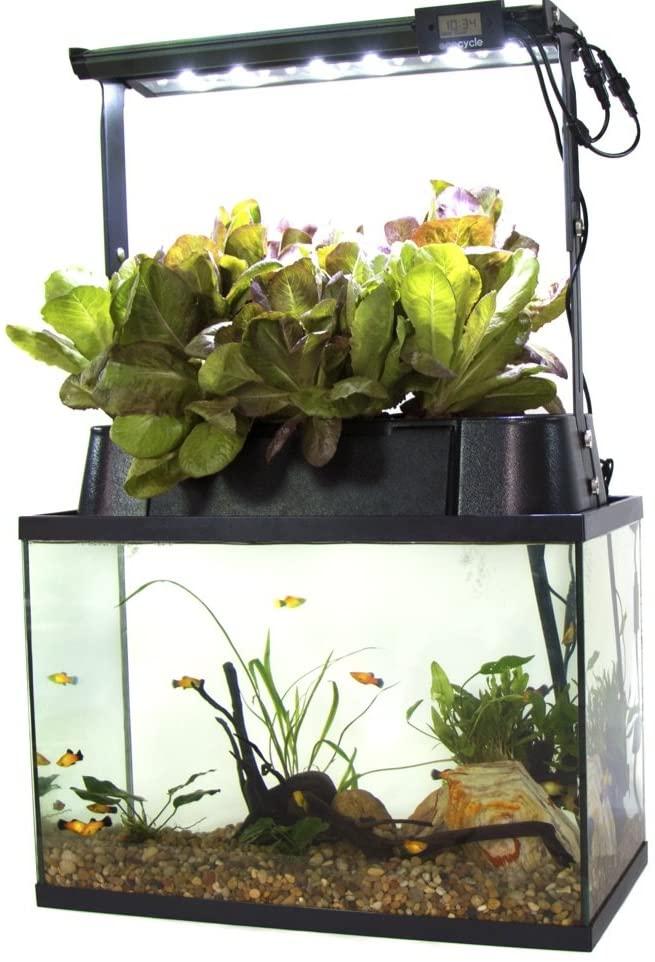 Ecolife ECO-Cycle Aquaponics