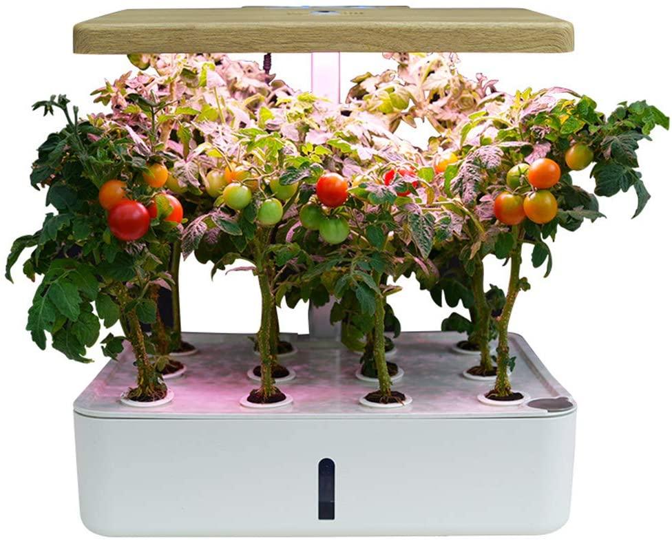 XiR Hydroponics Growing Gardening System Starter Kit